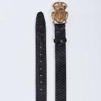Black Python Belt Beatle