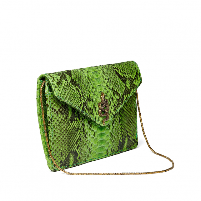 Cactus Python Card Holder Big Alex
