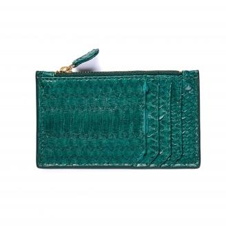Card Holder Green Blue Python